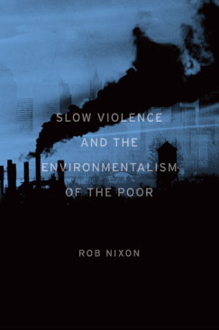 The Varieties of Environmental Violence