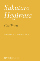"""The Riverbank of Desolation"": An Evening with Hagiwara's Translator"