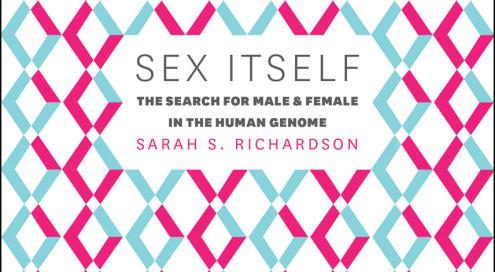 Gendering Chromosomes