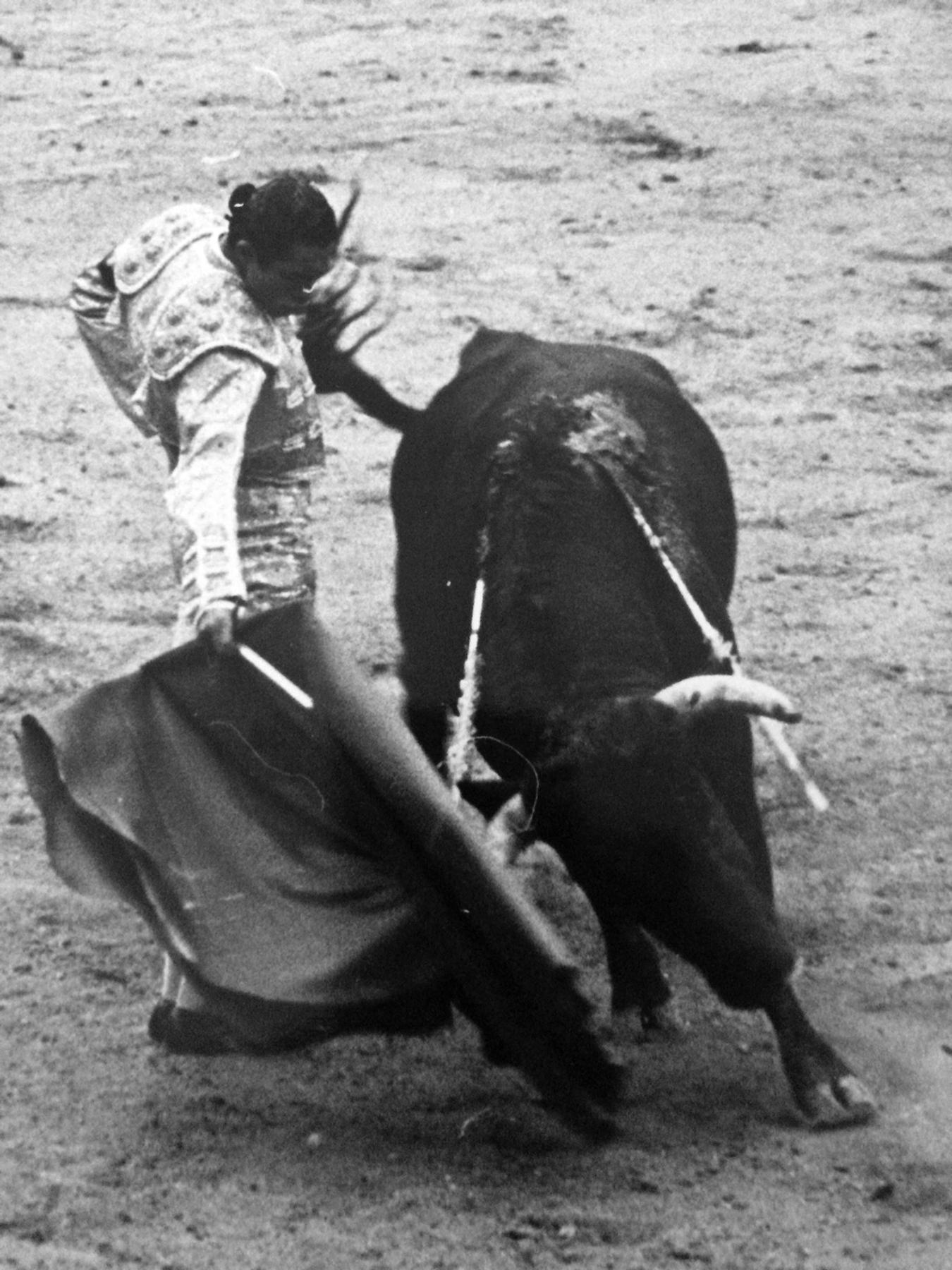 Matador and bull 1