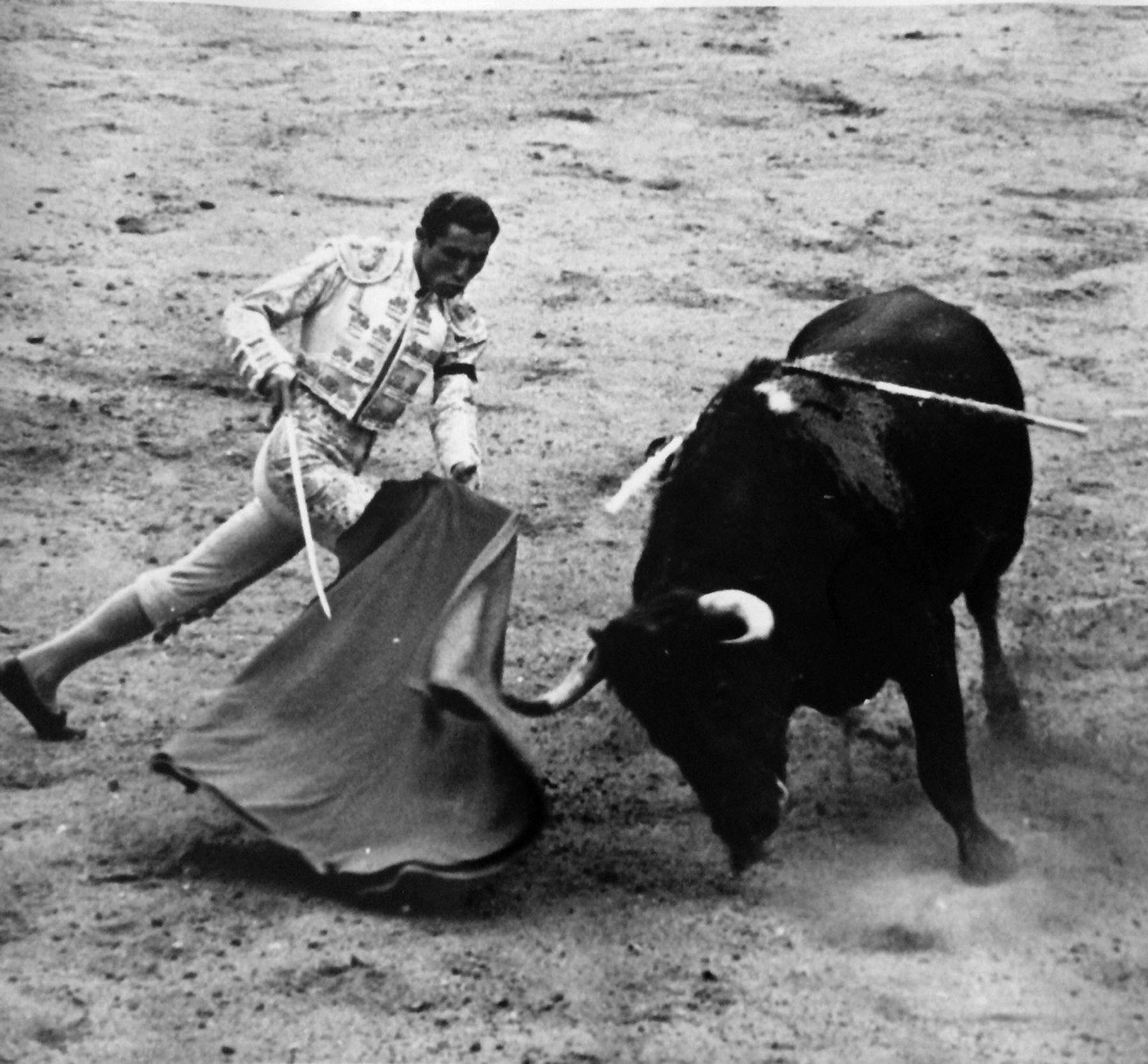Matador and bull 2