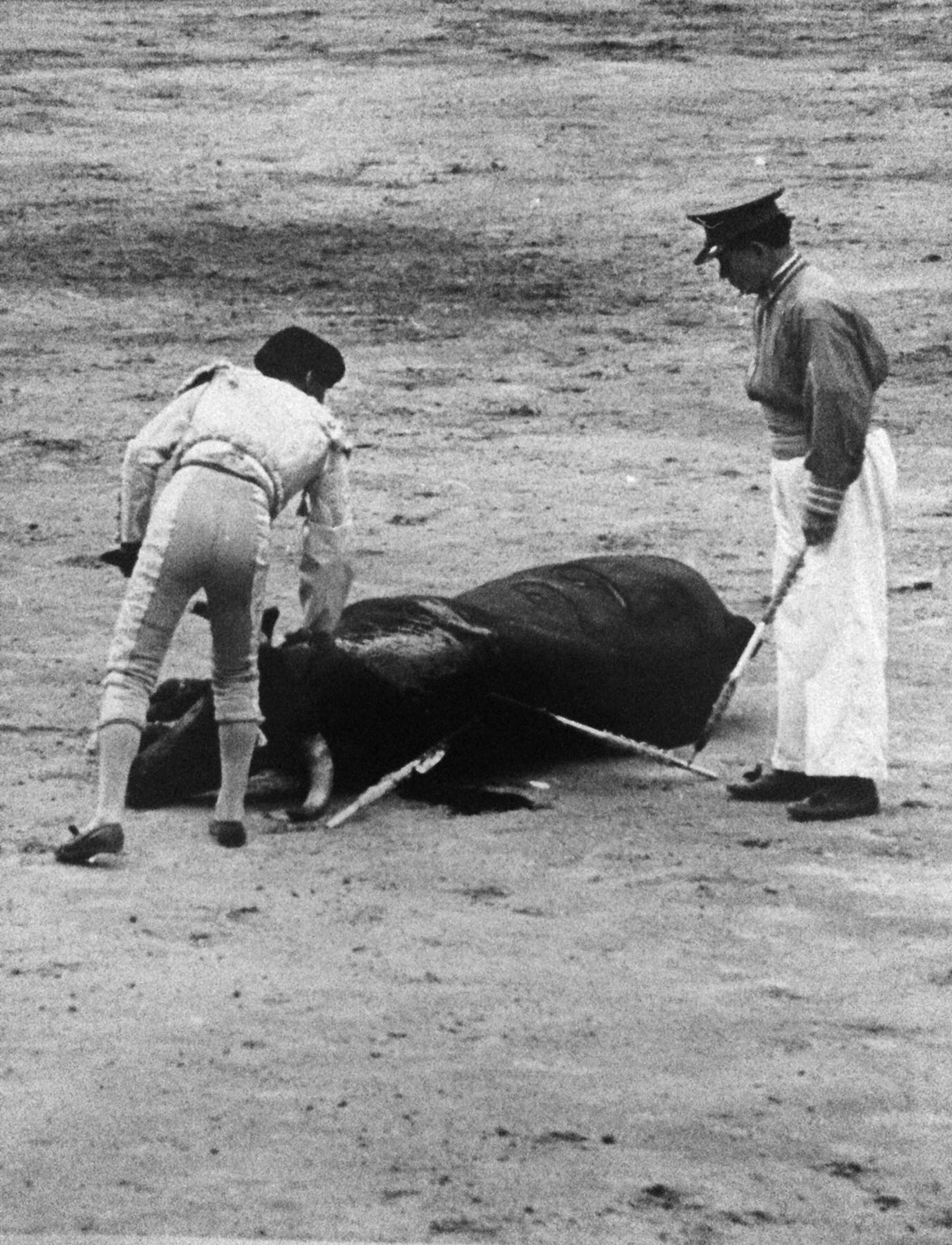 Matador and bull 3