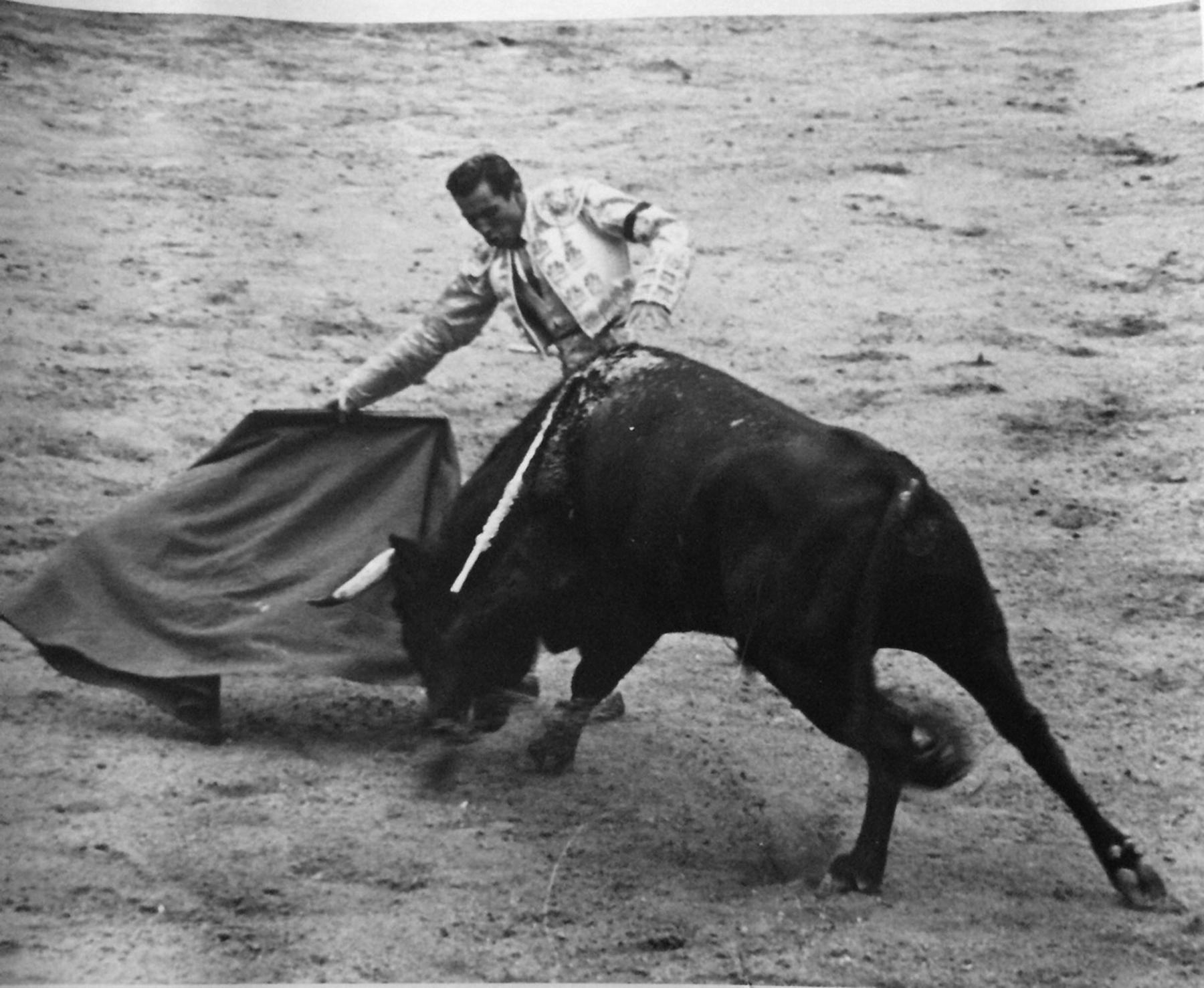 Matador and bull 4