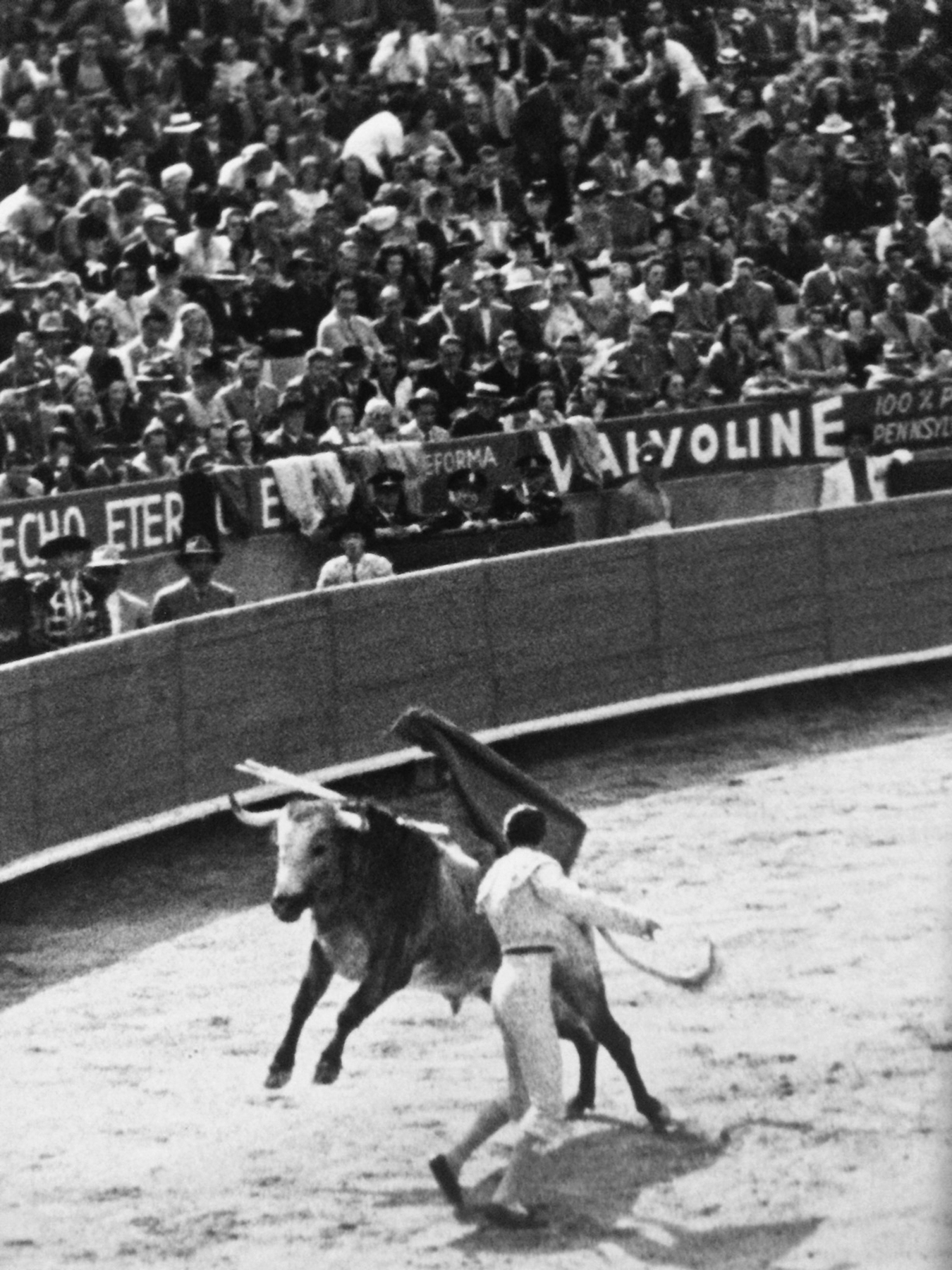 Opening bullfight